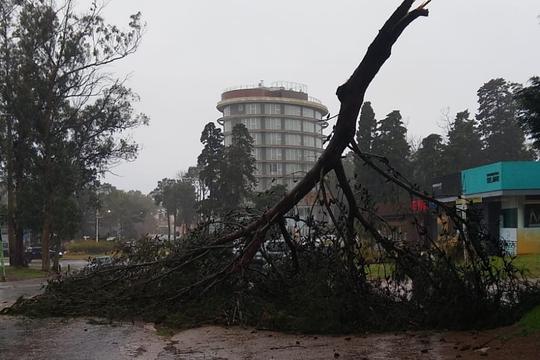 Destrozos en Pinamar: alerta por tormenta en la provincia de BUenos Aires