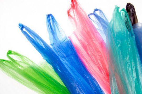 adios a las bolsas plasticas en la plata: ?esto va a tener una cuota de voluntad del pueblo?