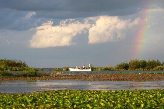dia de los humedales: por que es esencial su conservacion
