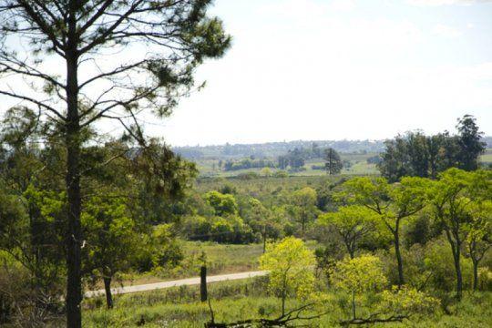 la unlp cede mas de 6 mil hectareas a comunidades guaranies en misiones: es un avance historico