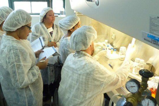 grave: en medio de una ola de hantavirus, un instituto medico no pudo atender 24 casos