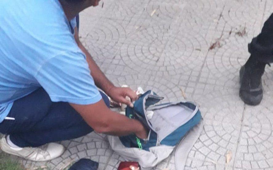 La Plata: robó en una verdulería y cayó luego de que la Policía rodeara la manzana