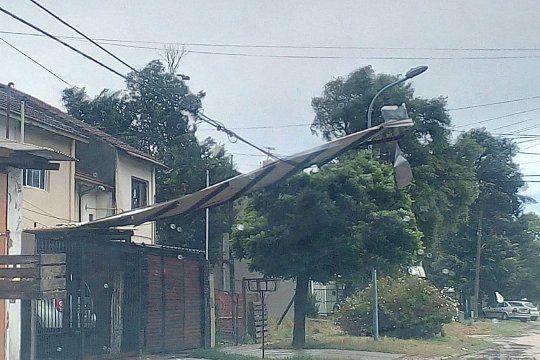 En el este de la Provincia hubo árboles caídos y sigue el alerta. FOTO DE ARCHIVO.