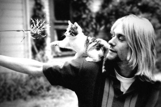 Kurt Cobain y su gato