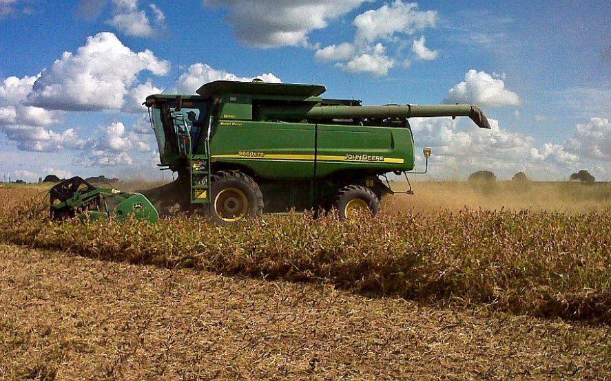 Por el repunte del agro, la economía revirtió la tendencia negativa en mayo