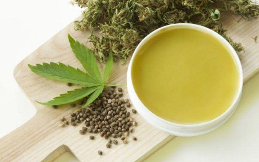 Usuarios y cultivadores cuestionan la eficacia del aceite de cannabis que proveerán las farmacias