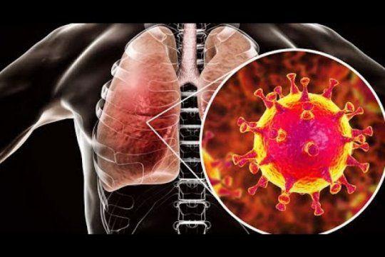 ¿por que el sistema inmune no puede contra el coronavirus?