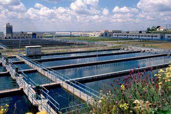 Las piletas en donde se almacena el agua para decantar despues de la floculación y su previo y posterior filtrados
