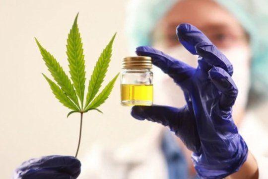 mas farmacias bonaerenses ayudaran a los pacientes a acceder al aceite de cannabis