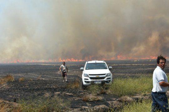 Se desmadró un asado y se quemaron 225 hectáreas sembradas con trigo
