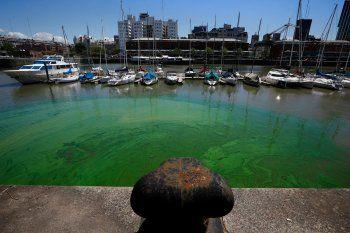 Agua verde en el Delta: qué dijo el Gobierno