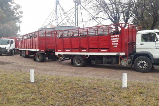 los transportistas de hacienda reclaman a los frigorificos exportadores por mejores condiciones de trabajo